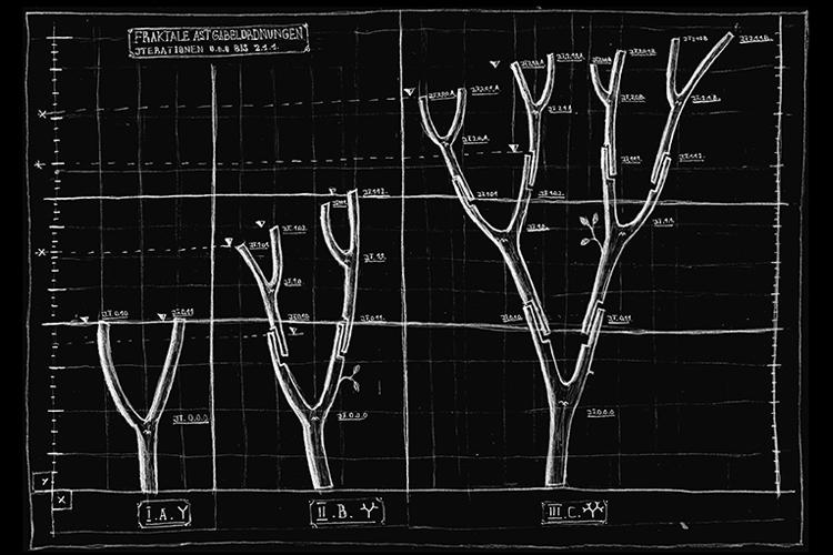 treefork pavilion model